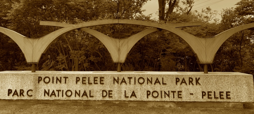 Point Pelee National Park – Southern tip of mainland Canada